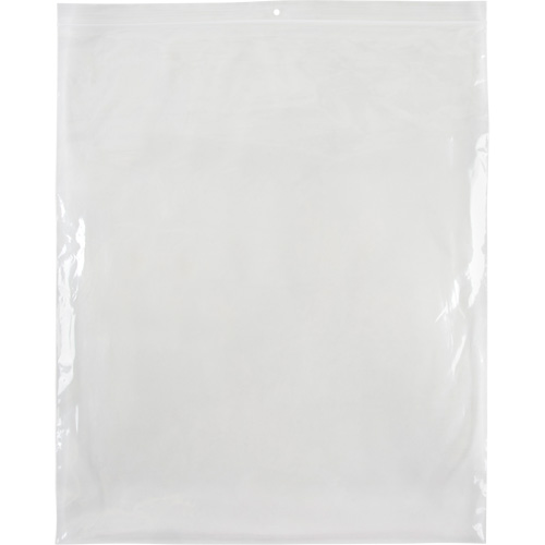 Reclosable Poly Bags PF961 | Equipment World